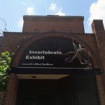 The Smithsonian's National Zoo Invertebrate Exhibit is Closed